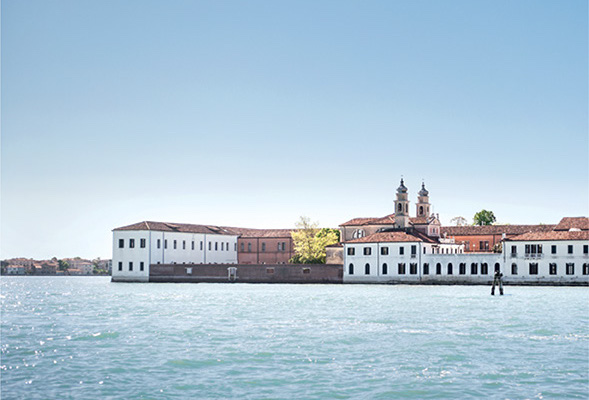 About Venice International University